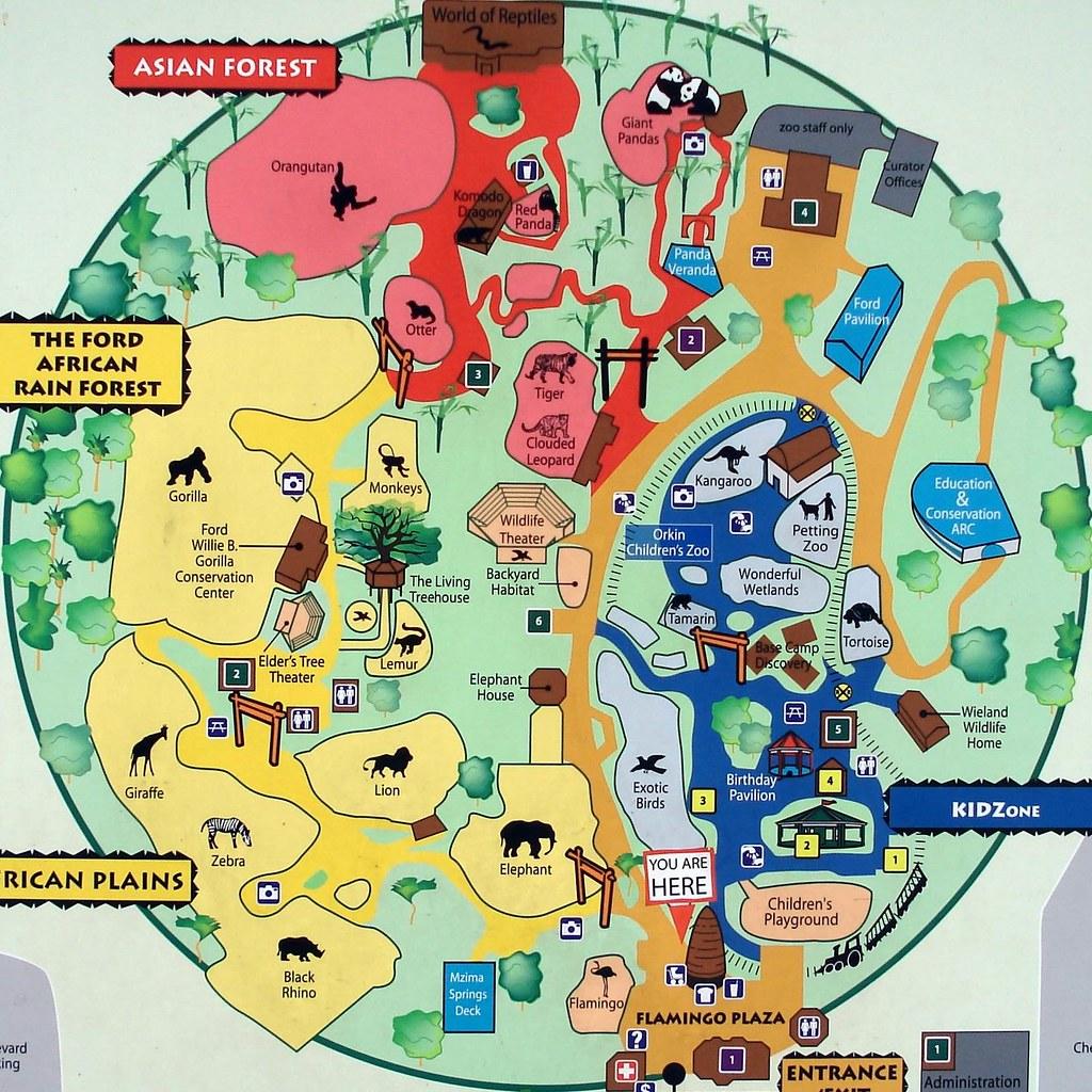 Zoo Atlanta Map Alphabetical Order Z Is For Zoo Tom