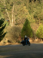 Kathleen riding into Yosemite Pines