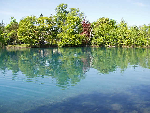 Chocolate Lake | June ...