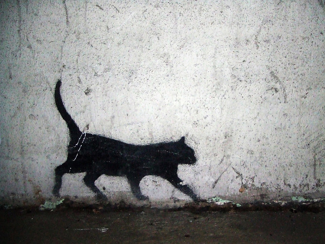 Paint A Black Cat