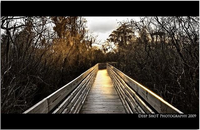 boardwalk to heaven by kodakeropt