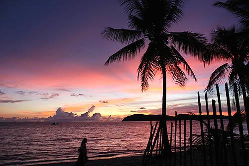 Palm Trees-2-Langkawi Tengah Beach Sunset-Malaysia