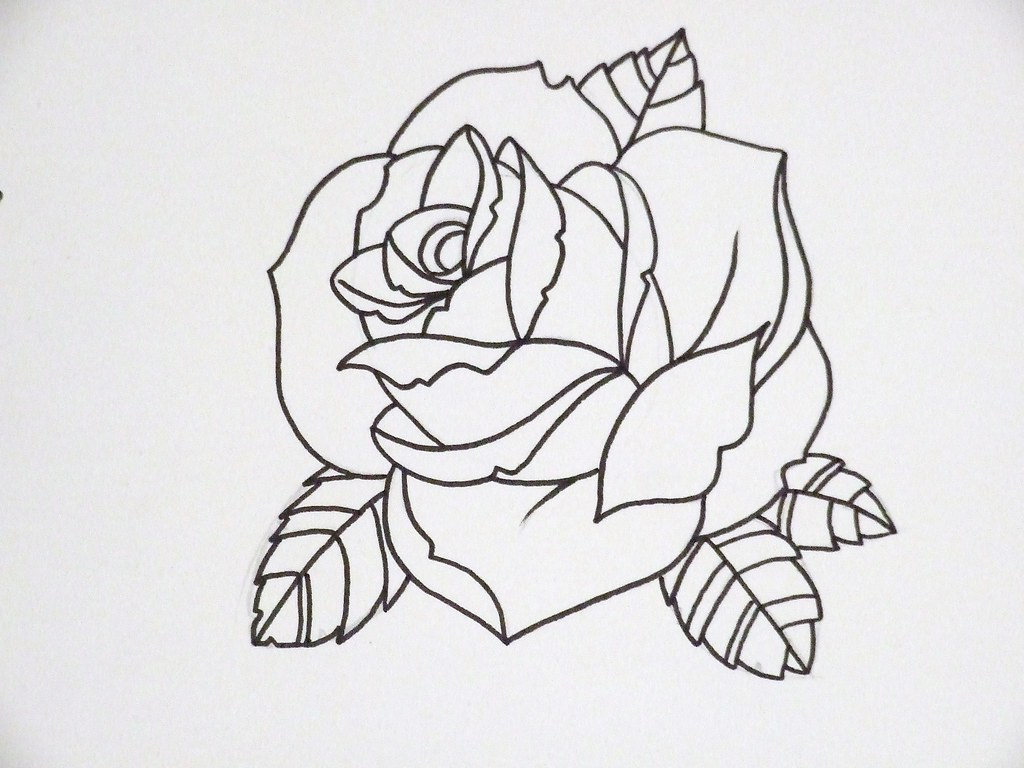 Line Art Rose Tattoo : Rose outline another joseph potter flickr