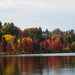Fall colors at Greenlake