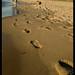 Oval Beach 2