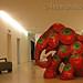 E004 - Strawberry - by Thanom Kongchan