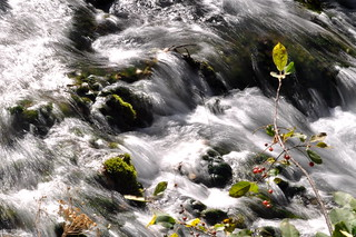 Rapids | by echobase_2000