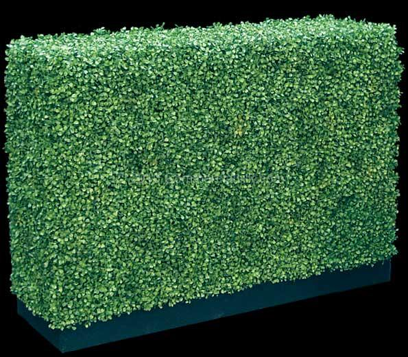 Plastic Boxwood Hedge Made From Faux Boxwood Panels Flickr