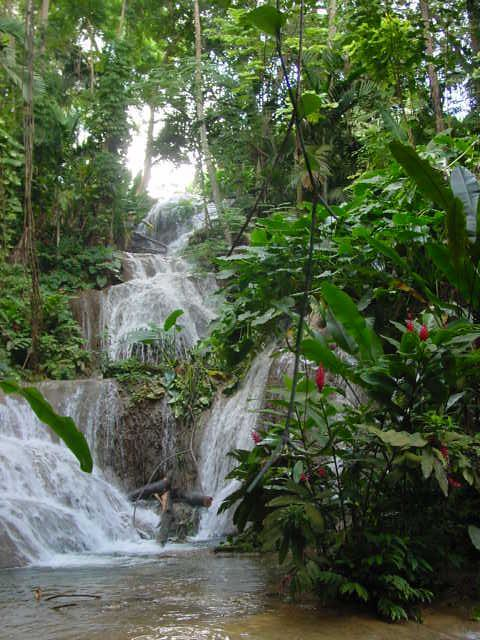 enchanted gardens ocho rios traceysfootprints flickr
