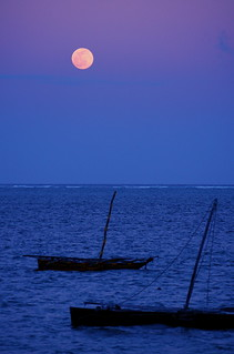 Moon Over Mombasa | by The Wandering Angel