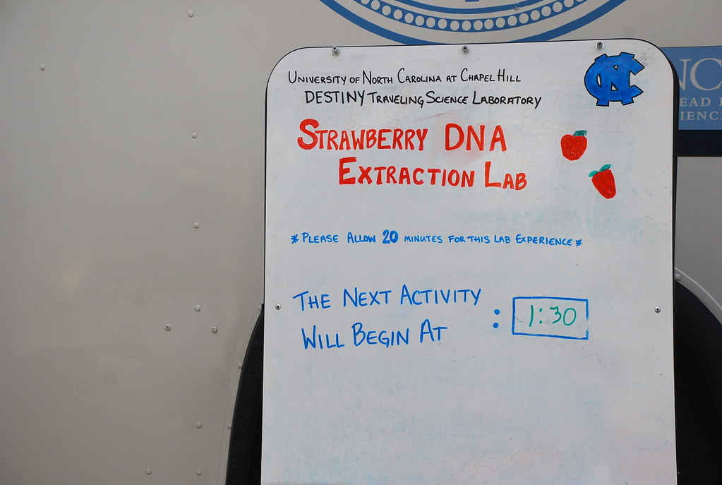 Strawberry DNA Extraction Lab at 1:30 | University of ...