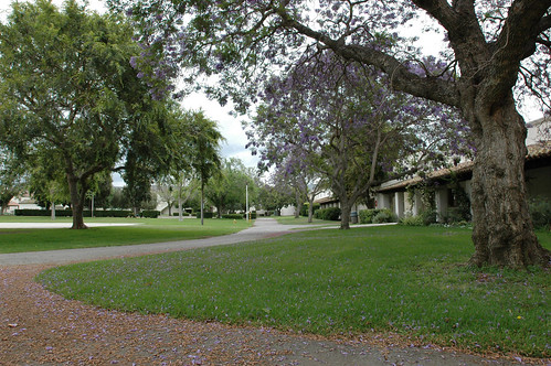 North Quad Greenery | by California State University Channel Islands