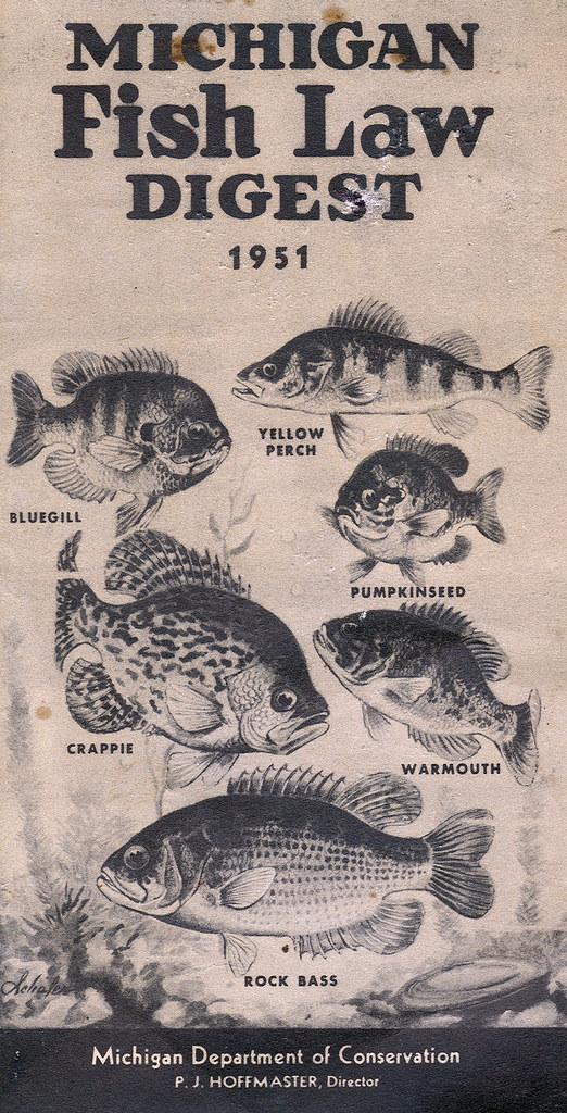 1951 michigan fishing license guide 1951 michigan for Michigan fishing license online