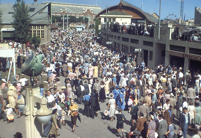Crowd At Sydney Royal Easter Show 1950 Shows The Sydney Ro Flickr