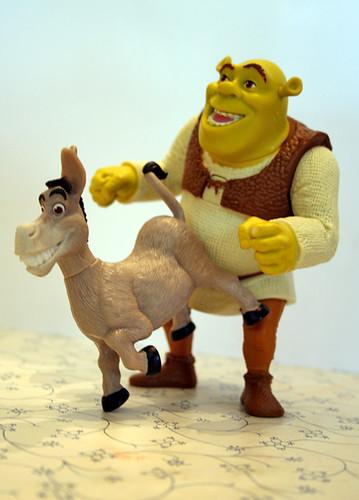 donkey sex
