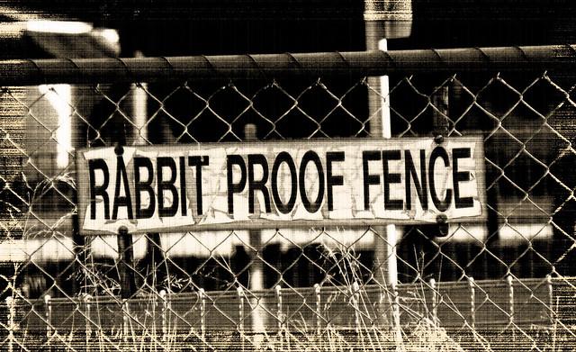 Rabbit-Proof Fence Essay