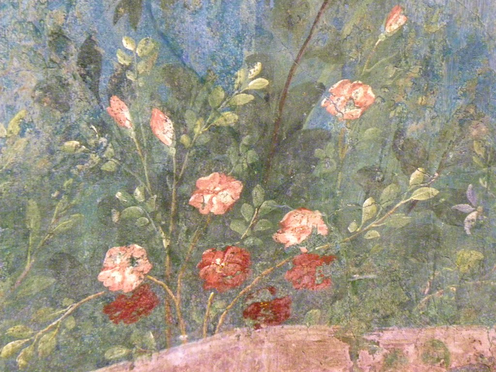 Roses House Of Livia Mural Cabbage Rose A Symbol Of