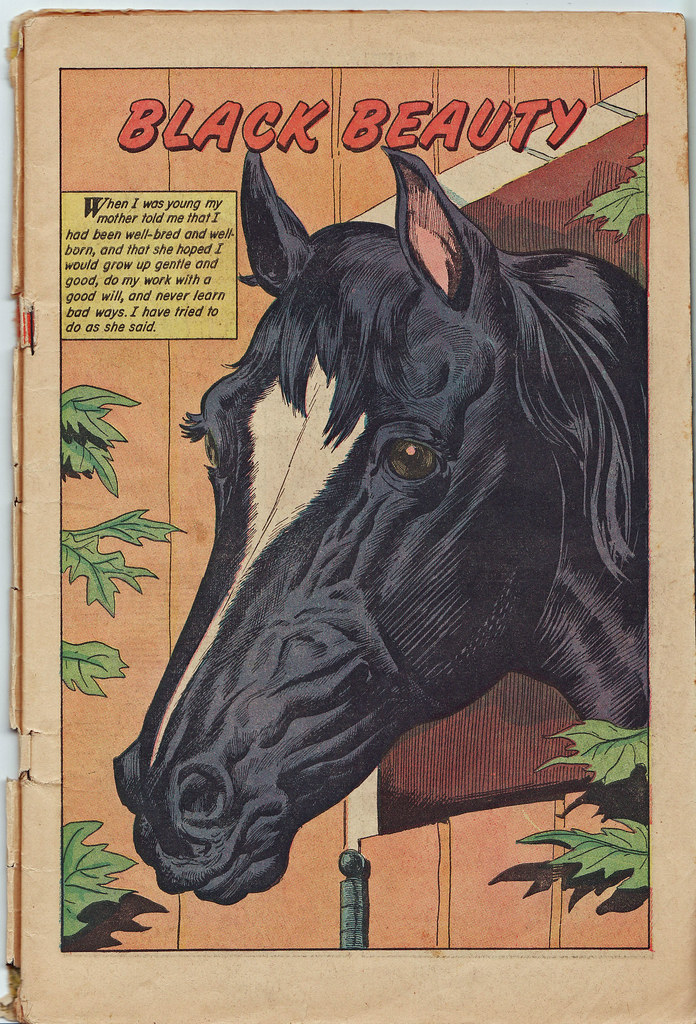 Black Beauty Book Cover : Black beauty comic book first page from a vintage copy
