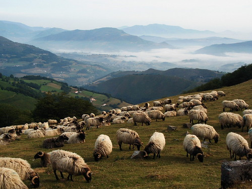 Mountain view with sheep | by Jule_Berlin