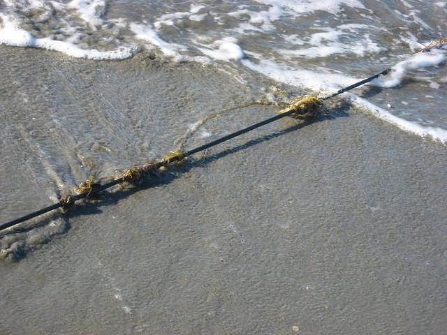 Fishing line on the sand explore alaskateacher 39 s photos for Fishing line camera