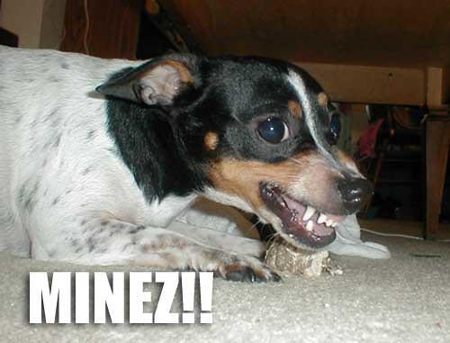 Barking Dog Alarm To Chase Geese Away