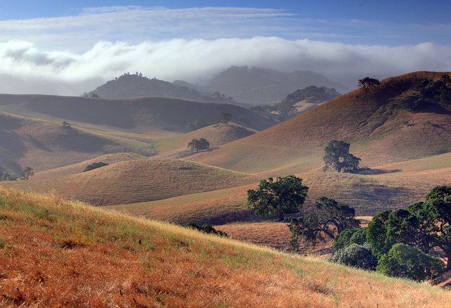 image of hills by Randal Beetle | flickr