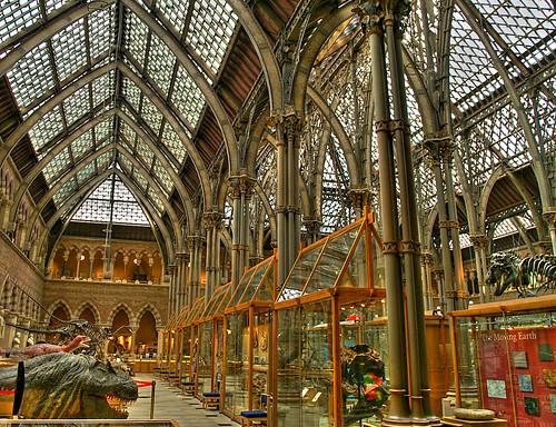 Oxford Museum Of Natural History Benjamin