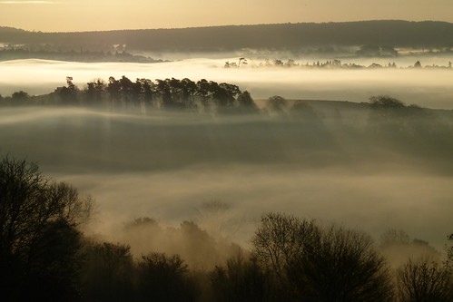 Sunrise Newlands Corner #5 | by Tim Stocker