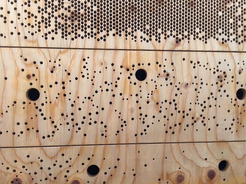 米兰世博会英国馆蜂巢