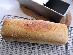 Malthouse sandwich loaf