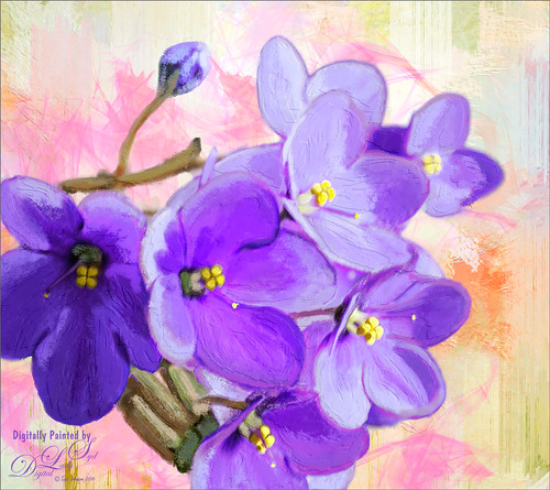 Painted image of some purple violets