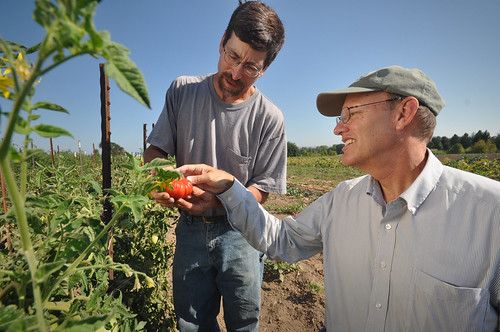Oregon organic farmer Chris Roehm and NRCS Basin Resource Conservationist Dean Moberg examining an organically-grown tomato at Square Peg Farms