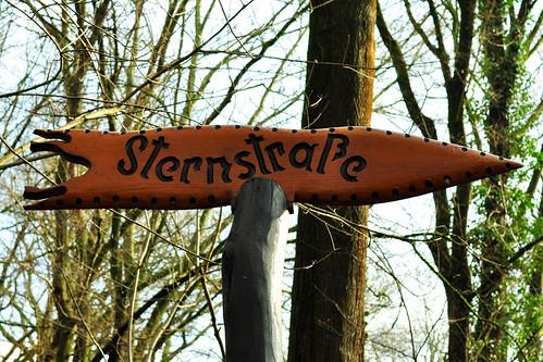 24. Februar 2016: Nach dem gestrigen heftigen Schneetreiben war heute wunderbares Wetter für einen Spaziergang im Mannheimer Waldpark am Rhein. Es wächst und sprießt und blüht. Romantische Stimmung an den Altrheinarmen, in den Wäldern duftet verführerisch der Bärlauch. Schön: Zweiblättrige Blausterne (Scilla bifolia), Misteln und blühende Sträucher. Man kann den Frühling fast schon riechen