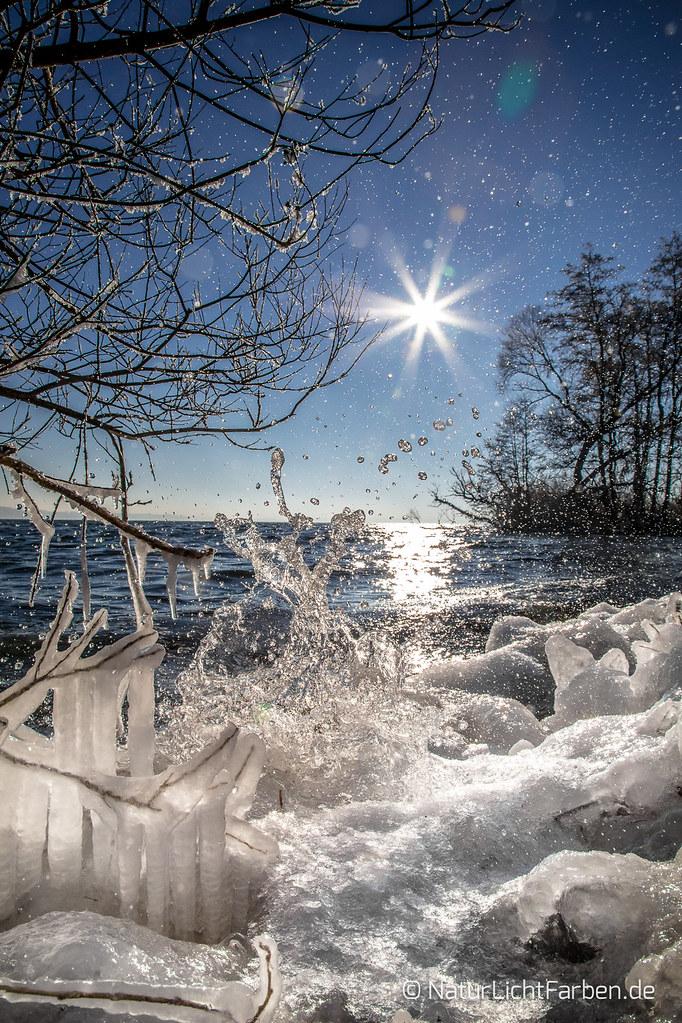 Winter Splash 2