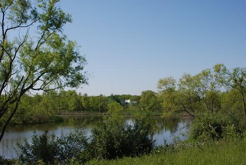 Gail Dunlap's restored wetland