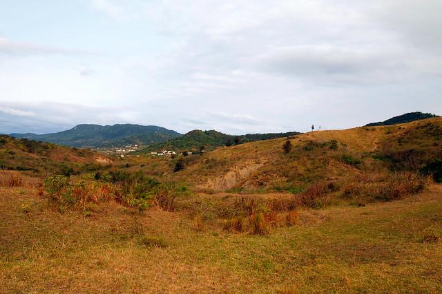 登上草坡可遠眺來時的永靖社區,遠方山頭的夫妻樹。攝影:李育琴