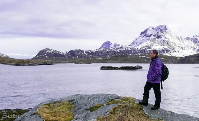 Sele en Islas Lofoten (Laponia Noruega)