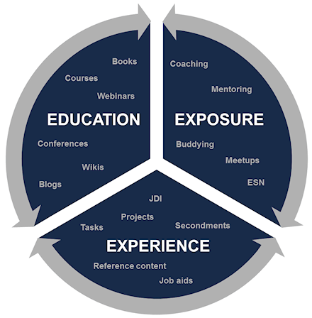 The 3 E's: Education, Exposure, Experience