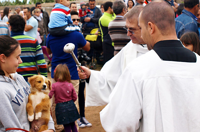 Blessing the puppy, San Abad, Buenavista del Norte, Tenerife