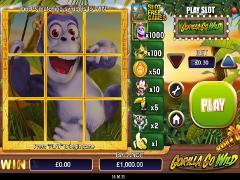 Gorilla Go Wild SC