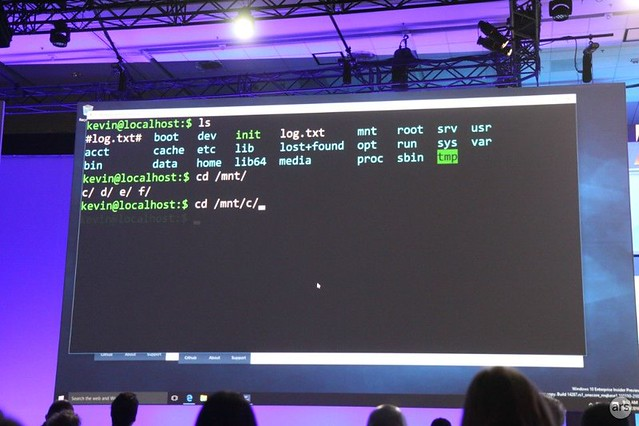 Microsoft-Windows-Linux.jpg