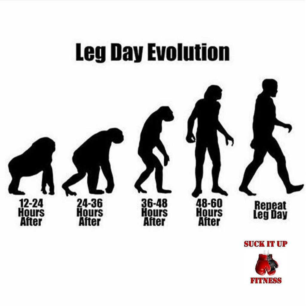 Leg day problems. Anyone else feel like this? After traini ...