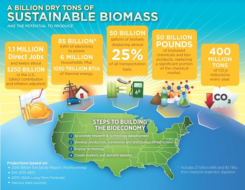 A Billion Dry Tons of Sustainable Biomass graphic