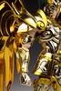 [Comentários] - Saint Cloth Myth EX - Soul of Gold Shura de Capricórnio - Página 3 26639538842_329dd4096e_t