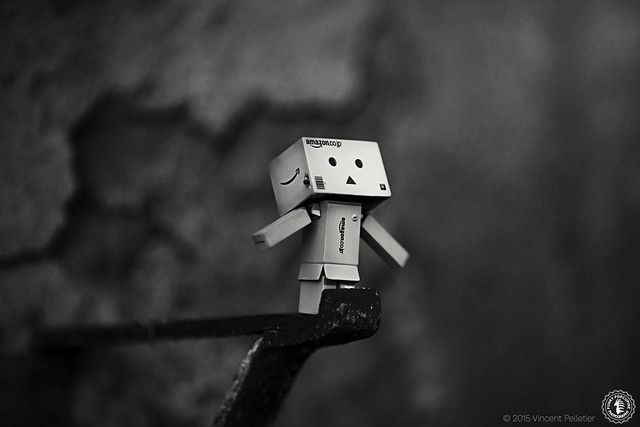 creative danbo toy photography