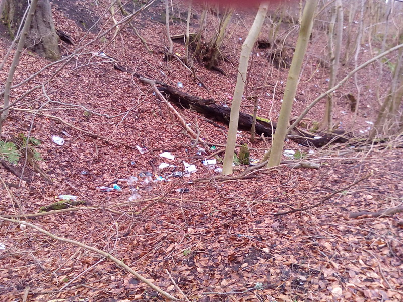Community Litter Pick 5th March Beeslack Woods 25441397481_64101a8bcc_c