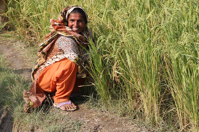 Women farmers access land for the first time in Pakistan