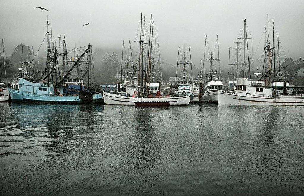 Fishing boats docked in the lincoln city harbour oregon for Fishing in lincoln city oregon