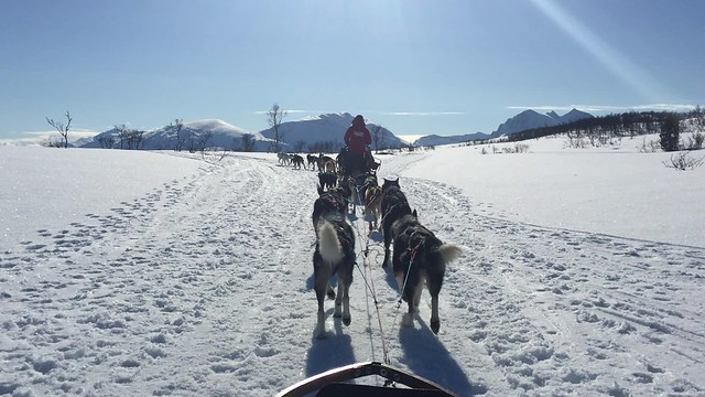 Laponia Noruega 2016