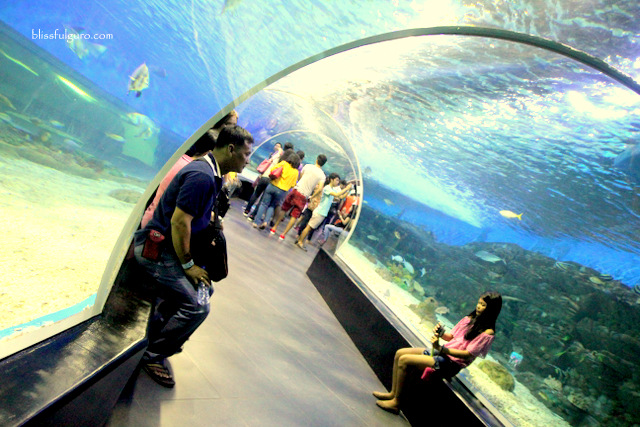 Manila Ocean Park Tunnel